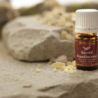 Young Living Sacred Frankincense Oil